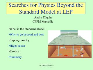 Searches for Physics Beyond the Standard Model at LEP