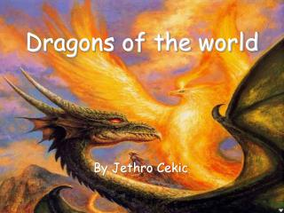 Dragons of the world