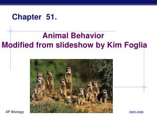 Animal Behavior  Modified from slideshow by Kim Foglia