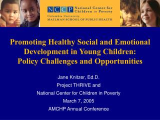 Promoting Healthy Social and Emotional Development in Young Children:  Policy Challenges and Opportunities