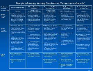 Northwestern Medicine Strategic Goals