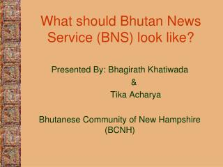 What should Bhutan News Service (BNS) look like?