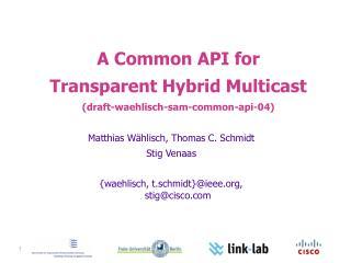 A Common API for Transparent Hybrid Multicast ( draft-waehlisch-sam-common-api-04)