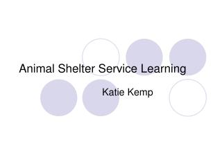 Animal Shelter Service Learning
