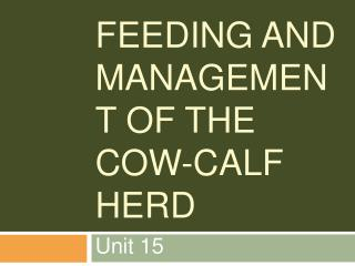 Feeding and Management of the Cow-Calf Herd