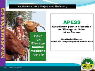 APESS Association pour la Promotion  de l'Elevage au Sahel  et en Savane Secrétariat Général,