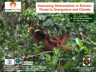 Assessing Deforestation in Borneo: Threat to Orangutans and Climate