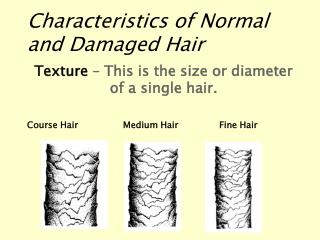 Characteristics of Normal and Damaged Hair