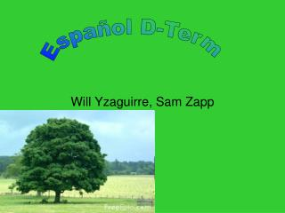 Will Yzaguirre, Sam Zapp