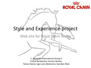Style and Experience project