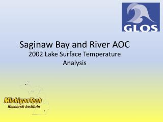 Saginaw Bay and River AOC