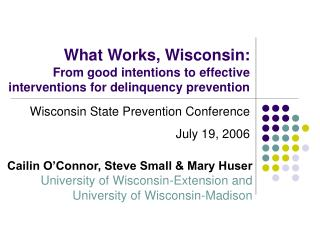 What Works, Wisconsin: From good intentions to effective interventions for delinquency prevention