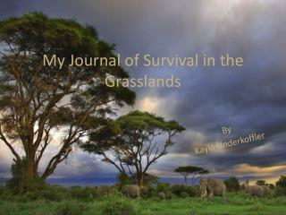 My Journal of Survival in the Grasslands