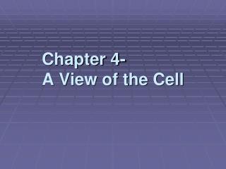 Chapter 4- A View of the Cell