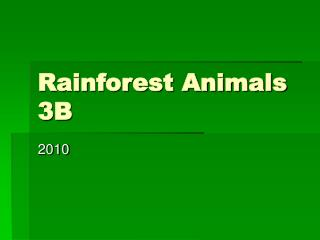 Rainforest Animals 3B