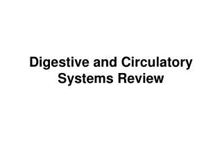 Digestive and Circulatory Systems Review