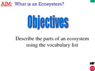 AIM: What is an Ecosystem?