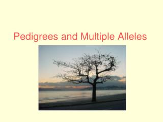 Pedigrees and Multiple Alleles
