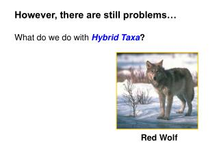 However, there are still problems… What do we do with  Hybrid Taxa ?