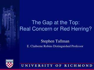 The Gap at the Top:  Real Concern or Red Herring?