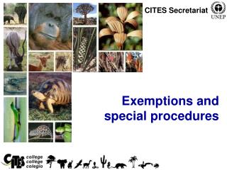 Exemptions and special procedures
