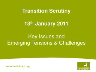 Transition Scrutiny   13th January 2011  Key Issues and  Emerging Tensions  Challenges