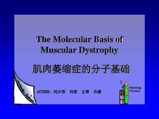 The Molecular Basis of  Muscular Dystrophy
