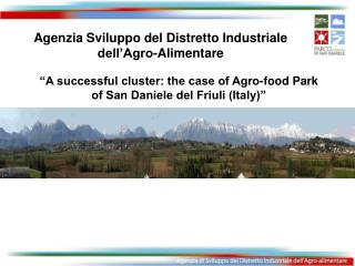 """A successful cluster: the case of Agro-food Park      of San Daniele del Friuli (Italy)"""