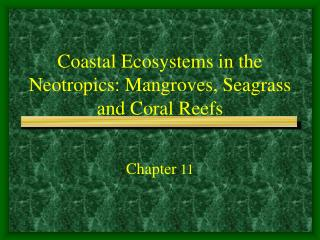 Coastal Ecosystems in the Neotropics: Mangroves, Seagrass and Coral Reefs