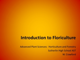 Identification of Floriculture Plants