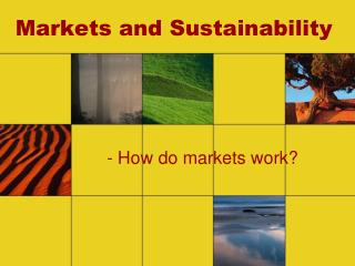 Markets and Sustainability