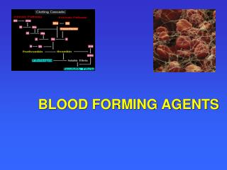 BLOOD FORMING AGENTS