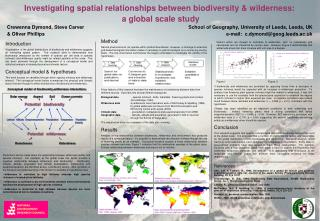 Investigating spatial relationships between biodiversity & wilderness:     a global scale study