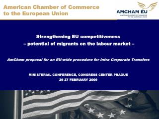 American Chamber of Commerce  to the European Union