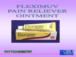 FLEXIMUV PAIN RELIEVER OINTMENT