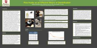 Rice Husks as an Effective Means of Denitrification