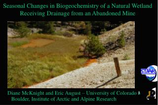 Seasonal Changes in Biogeochemistry of a Natural Wetland Receiving Drainage from an Abandoned Mine