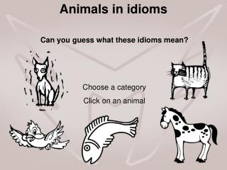 Animals in idioms