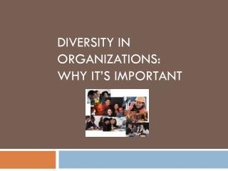 Diversity in Organizations:  why it's important