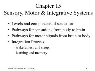 Chapter 15 Sensory, Motor & Integrative Systems