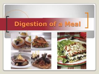 Digestion of a Meal