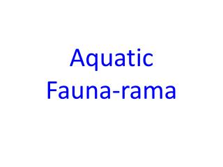 Aquatic Fauna-rama