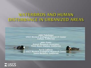 Waterbirds and Human Disturbance IN  URBANized  Areas
