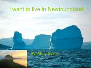 I want to live in Newfoundland