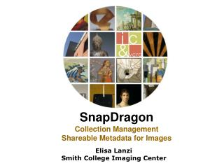 SnapDragon Collection Management Shareable Metadata for Images