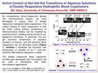 Figure 1.  Multiple Sol-Gel/Gel-Sol Transitions