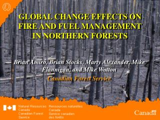 GLOBAL CHANGE EFFECTS ON FIRE AND FUEL MANAGEMENT IN NORTHERN FORESTS