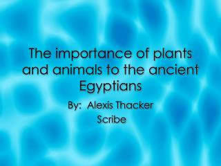 The importance of plants and animals to the ancient Egyptians