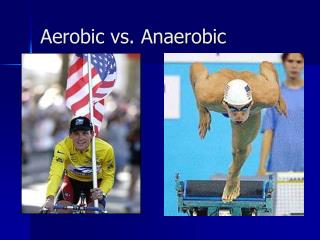 Aerobic vs. Anaerobic