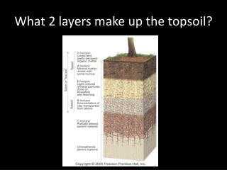 What 2 layers make up the topsoil?